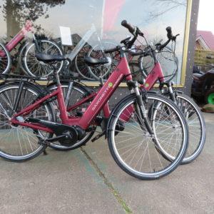 Saxonette Premium Plus E-Bike
