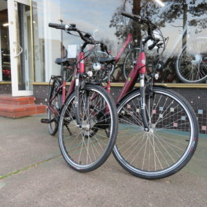 Mittelmotor E-Bikes